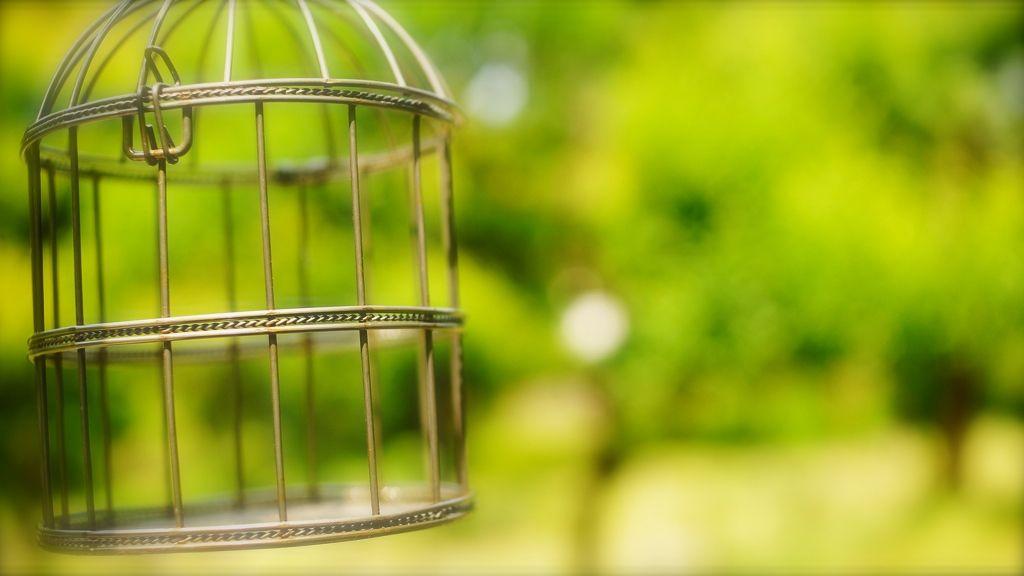 Cómo transformar un cliente cautivado en un cliente cautivo